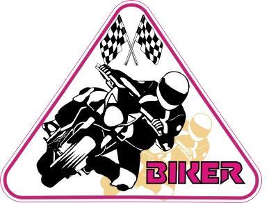 http://www.rousol.cz/polep/moto/na-auto/slides/biker.jpg